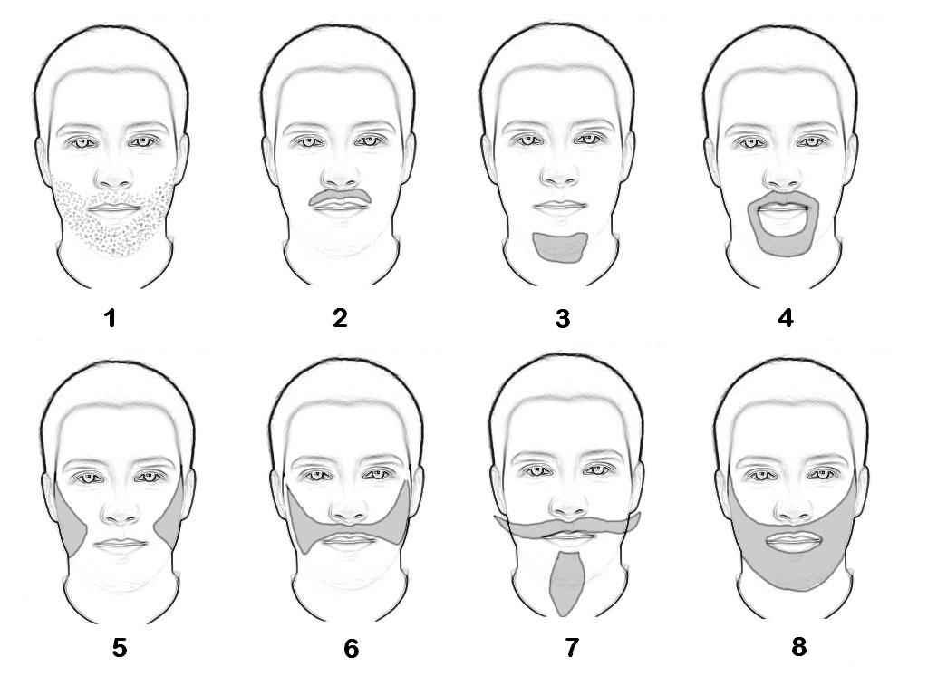 1. Eftermiddagsstubb (five-o'clock shadow); 2. Mustasch; 3. Bockskägg; 4. Henriquatre; 5. Polisonger; 6. Kejsar-skägg/Kejserligt skägg (Kaiserlicher Backenbart); 7. Victor Emanuel-skägg (Vittorio Emanuele barba); 8. helskägg (Bild: Roger Zenner / Wikimedia Commons)