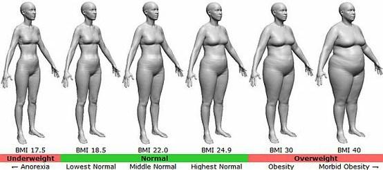 BMI_silhouette_graph