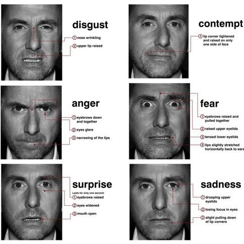 Denna bild användes inte i studien men här är det jag som selekterar och jag gillar Tim Roth <3