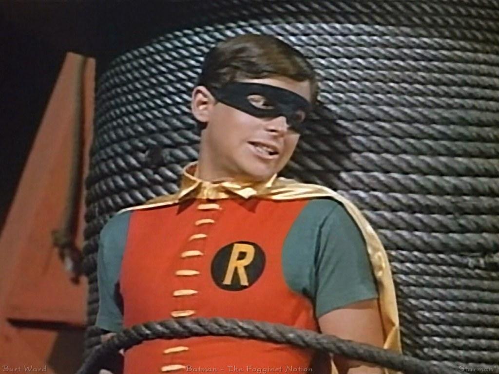 tied-robin