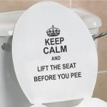 Toalettsitsars vidrighet