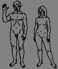 könsskillnader