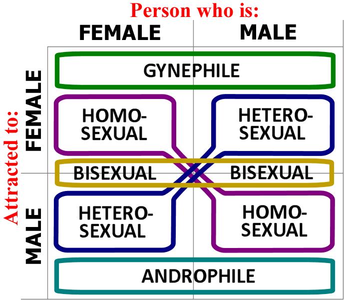 """""""Klipp ut och spara""""-diagram för den som inte håller reda på det här med sexuell läggning"""
